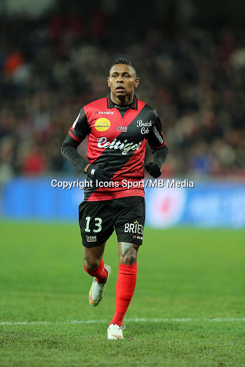 Christophe MANDANNE  - 24.01.2015 - Guingamp / Lorient - 22eme journee de Ligue1<br />