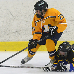Staff photos by Tom Kelly IV<br /> East's Alexa Weiderhold (39) dives to poke check this puck away from Unionville's Sierra Dycio (29) during the Downingtown East vs Unionville girls Flyer's Cup Championship, Wednesday night March 19, 2014 at Ice Line in West Goshen.