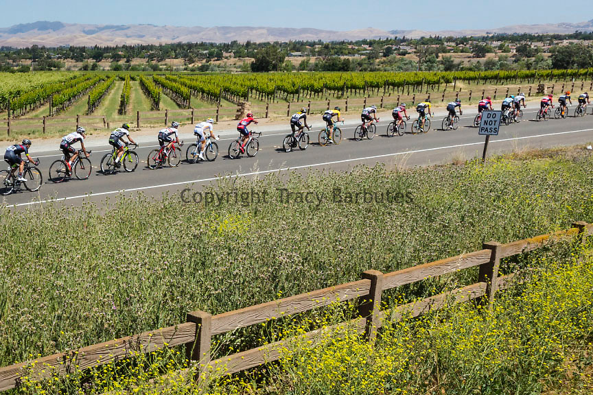 Tuesday, May 12, 2015<br /> The Amgen Tour of California peloton passes through vineyard country along Vallecitos Rd in Livermore, California, during its third stage. The day begins and ends in San Jose and includes 4,216-foot Mt. Hamilton.
