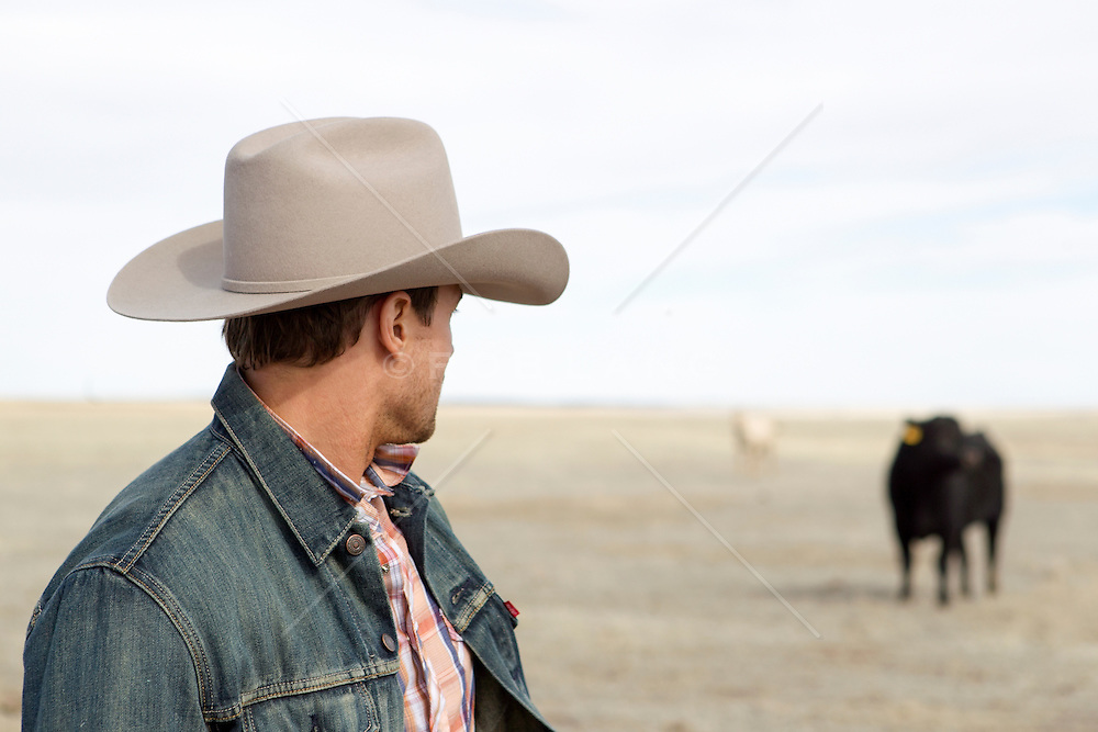 cowboy looking back over his shoulder at a bull on a ranch in New Mexico