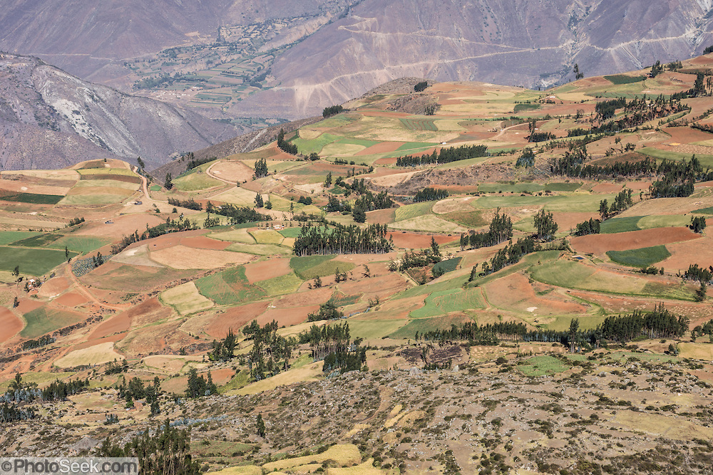 A patchwork of farms surrounds Hualcayan village in the Cordillera Blanca, Andes Mountains, Peru, South America. This was the last of 10 days trekking around Alpamayo in Huascaran National Park.