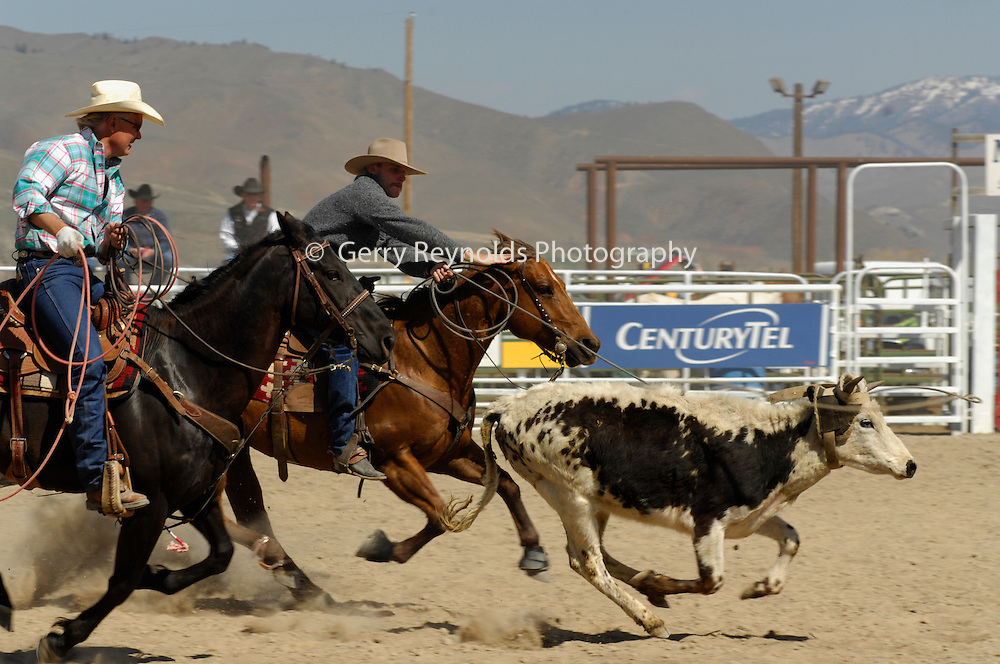 Roping, Team Roping, Tie-Down Roping, Calf Roping, Salmon Select Horse Sale, Rodeo, Salmon, Idaho