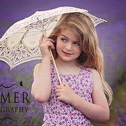 Beauty in Lavender