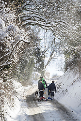 © Licensed to London News Pictures. 27/02/2018. Broomfield, UK. A family walk up a snow covered lane in Broomfield, Kent after sledging on a nearby hill. Freezing temperatures and heavy snow are affecting large parts of Kent.  Photo credit: Peter Macdiarmid/LNP