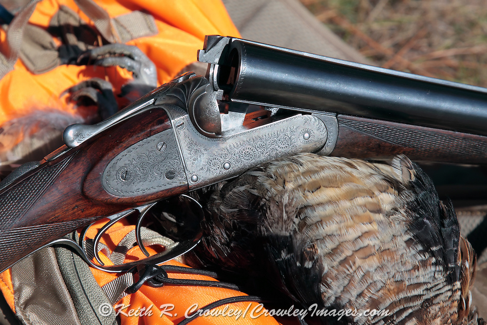 Webley Screw Grip Shotgun and Ruffed Grouse
