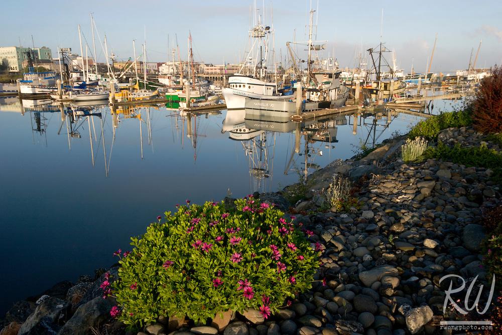 Woodley Island Marina, Eureka, California