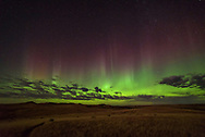 """Saskatchewan is called """"Land of the Living Skies."""" I found out why on this night. These red and green pillars moved across the northern skies over Grasslands National Park. The passing clouds only added to the scene. The moonlight came and went across the prairie."""