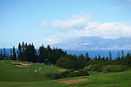 January 09 2015: Players make their way up to the first green of the First Round of the Hyundai Tournament of Champions at Kapalua Plantation Course on Maui, HI.