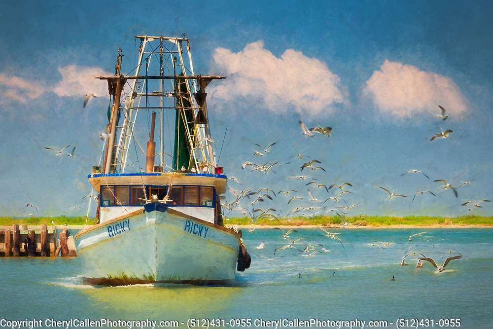 Fishing boat coming to dock after a long morning.