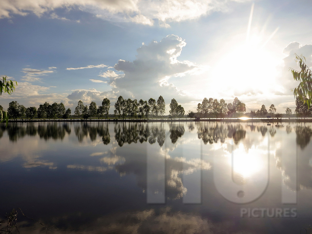 Quiet landscape of trees reflecting in a lake, Nong Khai Province, Thailand, Southeast Asia