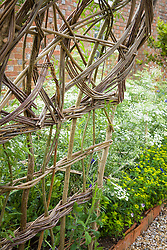 Hazel and willow arch
