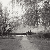 A couple sitting on a bench in a quiet park under trees