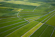 Nederland, Noord-Holland, Gemeente Ouder-Amstel, 25-05-2010. Amstelland, Polder de Rondehoep (ook Polder de Ronde Hoep), een van de grootste onbebouwde weidegebieden van de Randstad met karakteristiek stervormig kavelpatroon. Dit slotenpatroon van gerende verkaveling is ontstaan ten tijde van de ontginning in de middeleeuwen. .The Polder Rondehoep (or Polder Round Hoep), one of the largest undeveloped pasture area's in the Randstad with characteristic star-shaped pattern. This pattern is the result of the extraction during the Middle Ages..luchtfoto (toeslag), aerial photo (additional fee required).foto/photo Siebe Swart