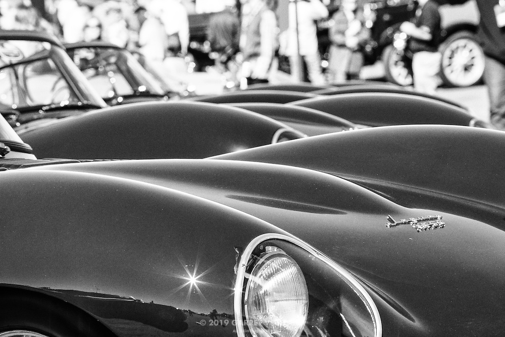 View down the hoods of the D-Type Jaguars, at the 2013 Santa Fe Concorso.