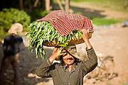 17 MARCH 2006 - KAMPONG CHHNANG, KAMPONG CHHNANG, CAMBODIA: A woman balances a load of vegetables on her head in Kampong Chhnang on the Tonle Sap River in central Cambodia. Photo by Jack Kurtz / ZUMA Press