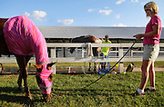 Shelley Hale, right, of Fremont, Mich., watches after her 12-year-old daughter Jenna Hale's horse, Fred, left, while Jenna cleans out Fred's stall at the Newaygo County Fair in Fremont, Mich., on Aug. 12, 2009. Behind Hale, Rileigh Shriver, 13, of Fremont, Mich., bathes her horse Grant. .