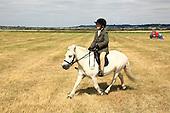 Class 23 - Ridden Pony - Any Type -
