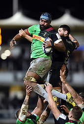 Tevita Cavubati of Harlequins wins the ball at a lineout - Mandatory byline: Patrick Khachfe/JMP - 07966 386802 - 10/01/2020 - RUGBY UNION - The Recreation Ground - Bath, England - Bath Rugby v Harlequins - Heineken Champions Cup