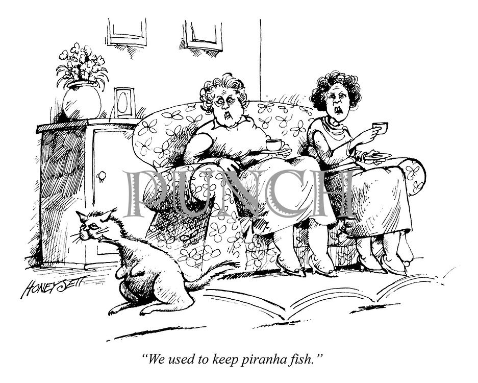 """We used to keep piranha fish."""