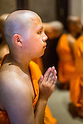 19 JULY 2014 - KHLONG LUANG, PATHUM THANI, THAILAND: A newly ordained novice prays for the first time as a member of the clergy during his ordination at Wat Phra Dhammakaya. Seventy-seven men from 18 countries were ordained as Buddhist monks and novices at Wat Phra Dhammakaya, a Buddhist temple  north of Bangkok, Saturday. It is the center of the Dhammakaya Movement, a Buddhist sect founded in the 1970s and led by Phra Dhammachayo (Phrathepyanmahamuni). It is the largest temple in Thailand. The Dhammakaya sect has an active outreach program that attracts visitors from around the world.    PHOTO BY JACK KURTZ