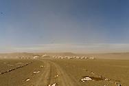 Mongolia. gobi desert. Three camels camp, yurt camp for tourists  in the Gobi desert in winter  Bayanzag -   /le camp des trois chameaux. camp de yourte pour touristes desert de Gobi en hiver  Bayan zag - Mongolie