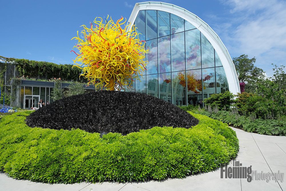 An exhibit in Seattle showcasing the studio glass of Dale Chihuly.