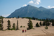 """Carcross Sand Dunes, Yukon, Canada. Mountainous rain shadow makes this area arid. Although some have called it the """"world's smallest desert"""" (1 square mile of sand dunes), the Carcross Dunes are actually too humid to be a true desert. Its sand comes mainly from nearby Bennett Lake, a former bed of a Pleistocene glacial lake. The exceptionally rare Baikal Sedge grows here (normally found only on the coast of Lake Baikal in Siberia)."""