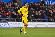 Anssi Jaakkola (31) of Reading looking dejected during the EFL Sky Bet Championship match between Swansea City and Reading at the Liberty Stadium, Swansea, Wales on 27 October 2018.