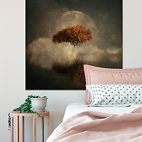 Interior example with Dreamlandscapes