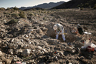 George Medich, 66, former rail mechanic from Nebraska, digs for gold on his small claim he rented at a Quartzsite prospectors club. A local say states that if you find even a very little gold nugget, you will keep digging for ten more years. 31 January 2008.