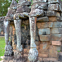 Three-headed Elephants at Angkor Thom in Angkor Archaeological Park, Cambodia<br /> Along a 984 foot wall in the center of Angkor Thom is the Elephant Terrace. On either side of a staircase is a stone sculpture of a three-headed elephant. Their trunks are pulling up lotuses. In Buddhism, this flower symbolizes purity and spiritual awakening. Jayavarman VII was one of the first kings to embrace Mahayana Buddhism. Prior emperors were believers of the Hindu religion. In Hinduism, the lotus represents beauty, prosperity and eternity.