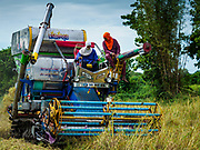 08 NOVEMBER 2017 - NONG SAENG, NAKHON NAYOK, THAILAND: Workers operate a harvesting machine during the 2017 rice harvest in Nakhon Nayok province. Thailand is the second leading rice exporter in the world and 16 million Thais work in the rice industry.      PHOTO BY JACK KURTZ