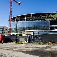 Warriors Stadium NEW