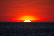 sunset at the equator on the ocean<br /> ECUADOR: Galapagos Islands<br /> Elizabeth Bay; Isabella Island<br /> 25-Aug-2010<br /> J.C. Abbott
