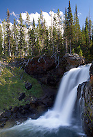 Moose Falls is a hidden gem just inside the boundary of Yellowstone National Park in Wyoming
