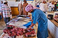 Sultanat d'Oman, gouvernorat de Ash Sharqiyah, Sinaw, le marché aux poissons  // Sultanate of Oman, Al Sharqiya Region, Sinaw, fish market