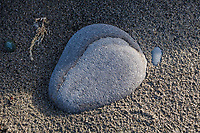 A small stone in the sand, Dugeness Spit, Washington, USA.