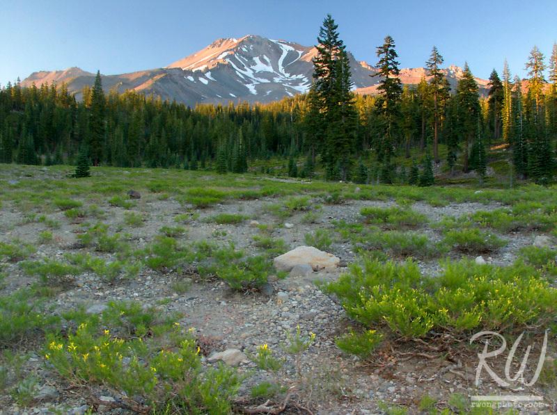 Mount Shasta at Sunset from Bunny Flat, California