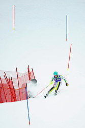19.01.2014, Maennlichen Jungfrau, Wengen, SUI, FIS Weltcup Ski Alpin, Wengen, Slalom, Herren, im Bild Felix Neureuther (GER) // during mens Slalom of FIS Ski Alpine World Cup at the Maennlichen Jungfrau in Wengen, Switzerland on 2014/01/19. EXPA Pictures © 2014, PhotoCredit: EXPA/ Freshfocus/ Urs Lindt<br /> <br /> *****ATTENTION - for AUT, SLO, CRO, SRB, BIH, MAZ only*****