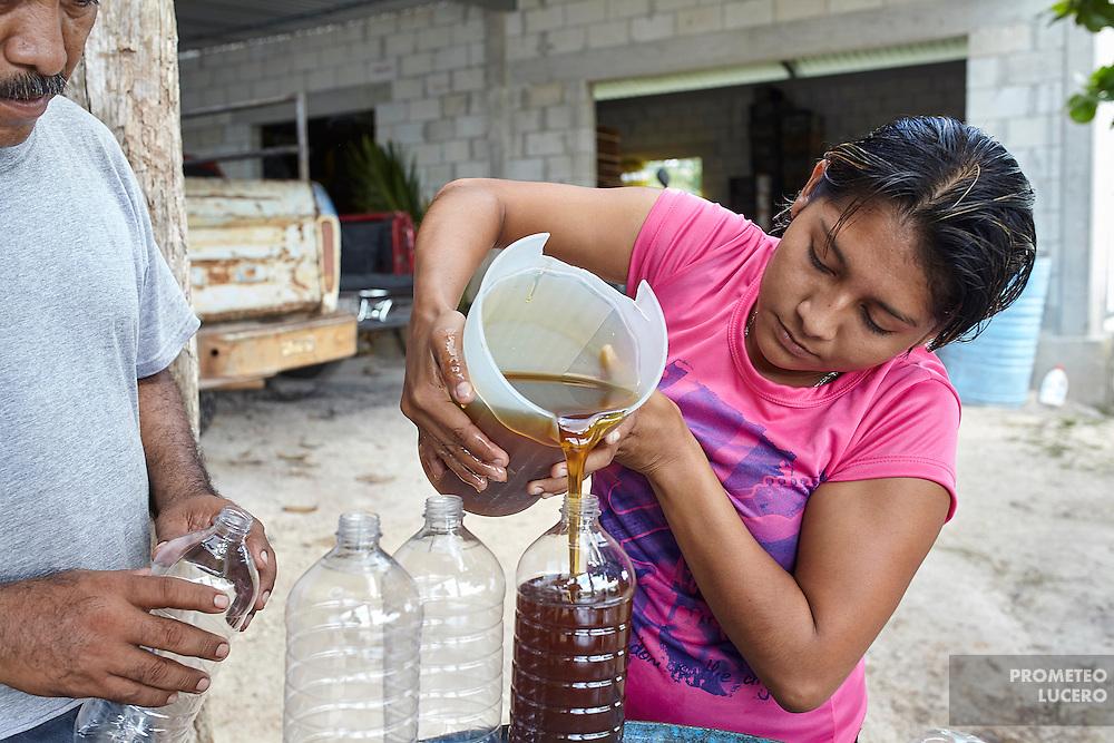Jose Manuel Poot y su hija vierten miel recolectada en recipientes para su posterior venta. (Prometeo Lucero)