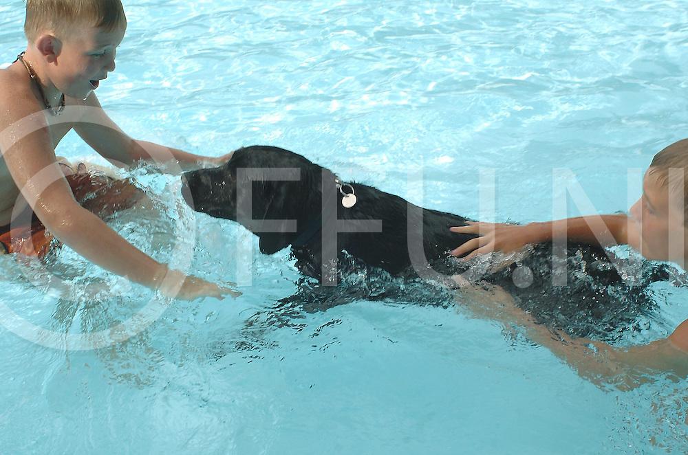 060902, de krim, ned,<br /> In het Krimse zwembad was zaterdagmorgen het evenement zwemmen voor honden met hun baasjes, Foto<br /> fotografie frank uijlenbroek&copy;2006 michiel van de velde