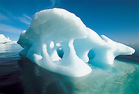 Melting iceberg and water