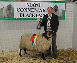 Mayo/Connemara Sheep Show of Blackface Rams.<br />