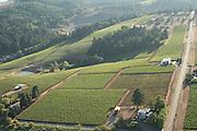 Aerial view over Winderlea winery & vineyards, Dundee Hills AVA, Willamette Valley, Oregon
