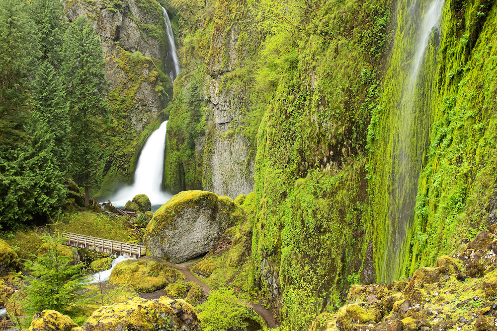 The rain was beginning to fall in as we hiked up the wahkeena falls trail saturating the basin with falling water.