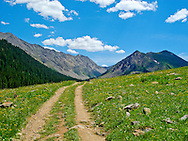 Old Mining Road in Colorado Collegiate Peaks