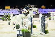 Sarah Rose Berg - Wonder S<br /> Jumping Indoor Maastricht 2018<br /> © DigiShots