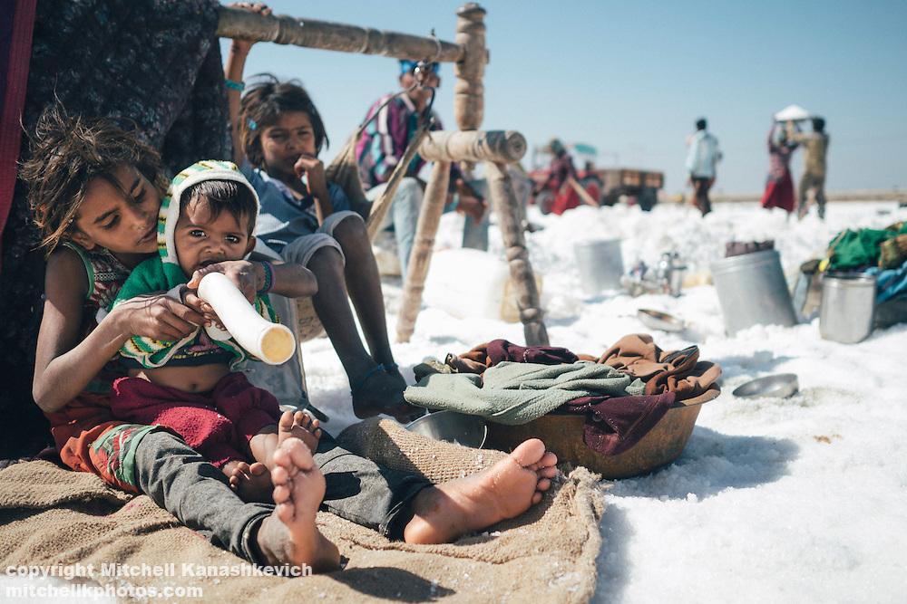 Salt workers in salt pans around Dwarka, Gujarat, India.