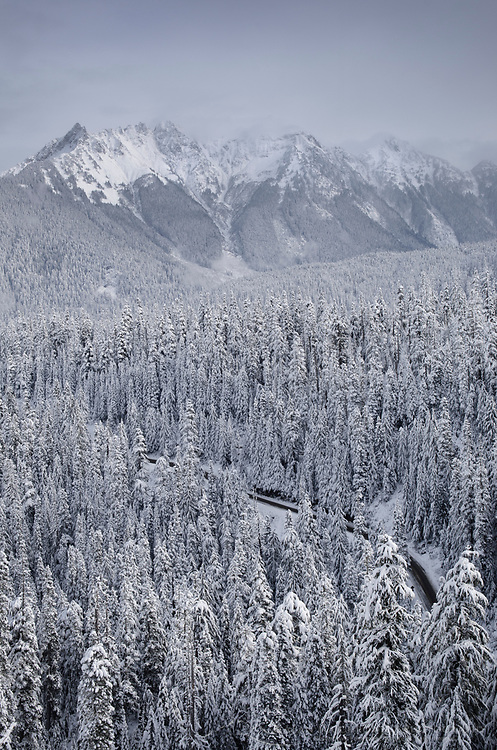 North Cascades after fresh snowfall. Mount Sefrit and Nooksack Ridge in the distance, Washington