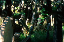 CZECH REPUBLIC PRAGUE AUG97 - Tombstones at the Jewish cemetery in central Prague.. . . jre/Photo by Jiri Rezac. . © Jiri Rezac 2000. . Tel:   +44 (0) 7050 110 417. Email: info@jirirezac.com. Web:   www.jirirezac.com